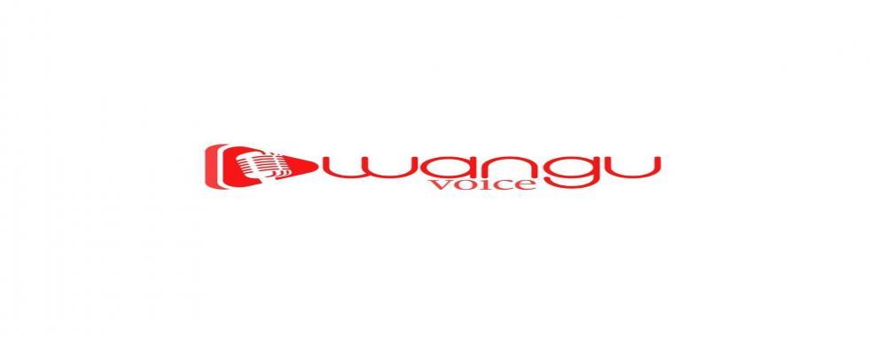 WANGU VOICE est un concours de musique Jeune Talent  artistique que cache la RDC.