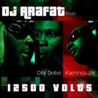Dj Arafat 12500 volts (feat. Dibi Dobo, Kamnouze) cover