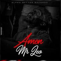 Mr Leo Amen cover