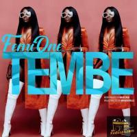 Femi One Tembe