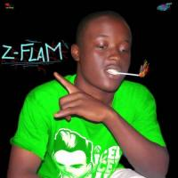 Z-FLAM rien a faire