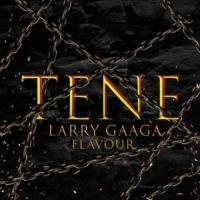 Larry Gaaga Tene (feat. Flavour) cover