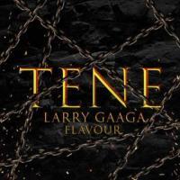 Larry Gaaga Tene (feat. Flavour)