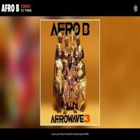 Afro B Condo (feat. T-Pain)