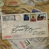 Burna Boy Wonderful cover