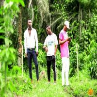 Afro Congo Music Bolingo_ya_tiombo
