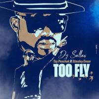 Dj Sallas Too Fly (feat. Tzy Panchak, Stanley Enow)