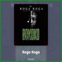 Roga Roga Bokoko (feat. Extra Musica)