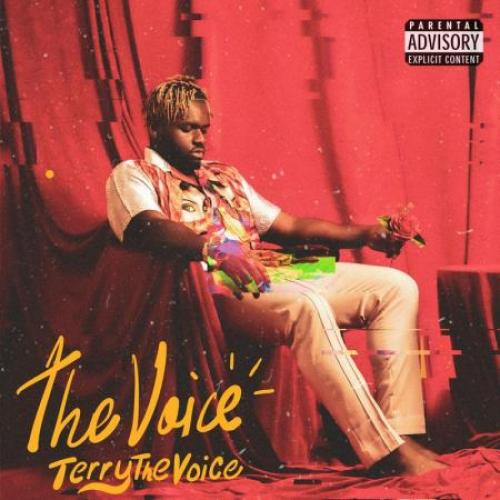 TerrytheVoice The Voice album cover