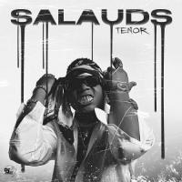Tenor Salauds
