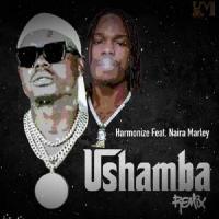 Harmonize Ushamba (Remix) [feat. Naira Marley]