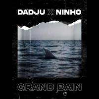 Dadju Grand Bain (feat. Ninho) cover