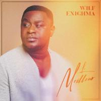 Wilf Enighma Le meilleur