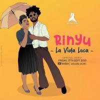 Rinyu La Vida Loca cover