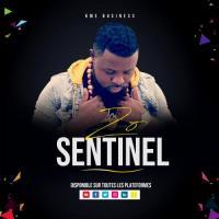 Sentinel Zo