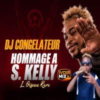 DJ Congélateur Hommage à S Kelly