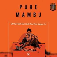 Sonny Flash PMB (feat. Kody Fox, Sayper DJ)