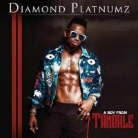 Diamond Platnumz A Boy From Tandale