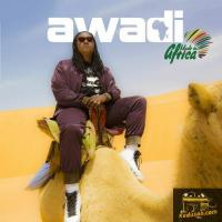 Didier Awadi Made in Africa