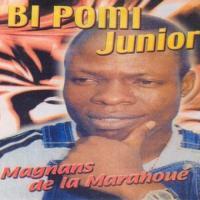 Bi Pomi Junior Zouzougbe