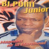 Bi Pomi Junior Djiblowy