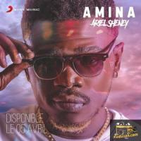 Ariel Sheney Amina cover